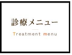 診療メニュー Treatment menu